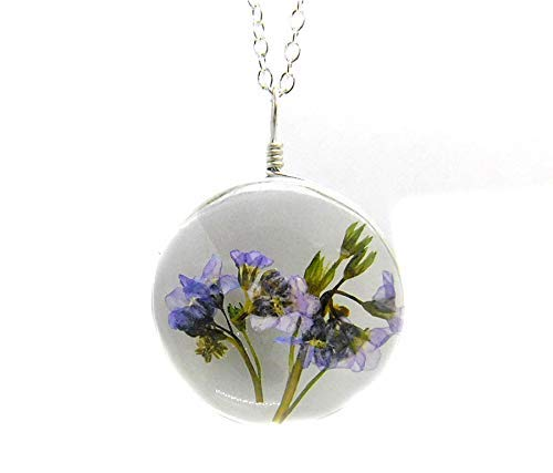 Forget Me Not Real Dried Flowers Pendant Necklace Glass Jewelry - Silver Stainless Steel Chain - Remembrance Sympathy Memorial Gift