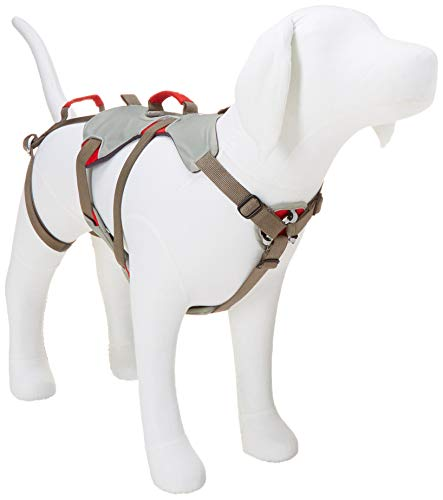 RUFFWEAR - Doubleback, Strength-Rated Belay Dog Harness, Rock Climbing...