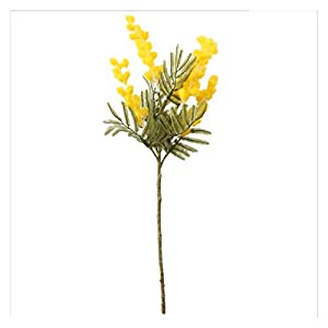 changshuo Artificial Flowers 38cm Fake Acacia Artificial Flowers Yellow Mimosa Cherry Fruit Branch Wedding Home Table Decoration Fake Flower (Color : Yellow)