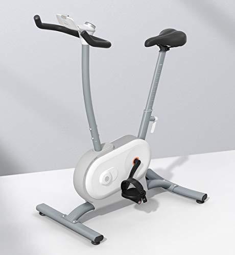 Indoor Cycling Bike, Silent Belt Drive Cycle Bike met verstelbaar stuur en stoel, fitnessfiets en ab-trainer, sportuitrusting