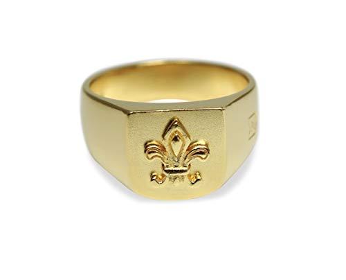 Sprezzi Herren Gold Siegel-Ring aus 925 Sterling Silber (vergoldet) massiv matt mit Wappen Symbol Gravur traditionell elegant | Silberschmuck Ring Männer aus Deutschland mit Geschenkverpackung (66)