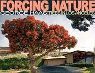 Forcing Nature: Tree in Los Angeles