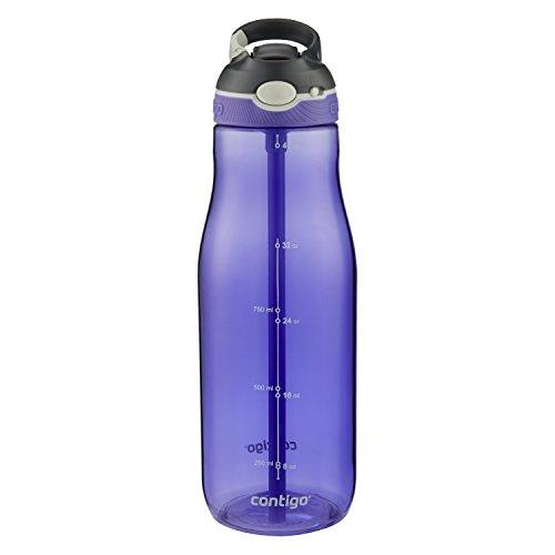 Contigo AUTOSPOUT Straw Ashland Water Bottle, 40 oz., Grapevine