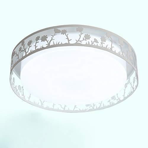 YANQING Duurzame Plafondlampen Creatieve Eye-Care LED Plafond Licht, Plafond Lamp voor Aisle Balkon Kinderkamer, Acryl Lampenkap Romantische Plafond Verlichting Kroonluchter Plafond Lichten