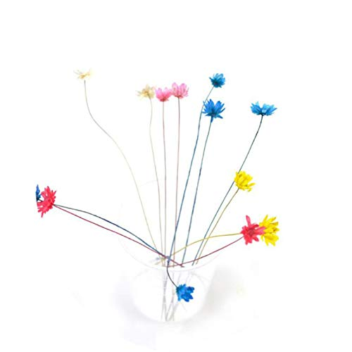 6/10pcs Lavender Floral Real Artificial Dried Flowers Wholesale Plant Wall Decoration Bouquet Material Manual DIY Vases for Home