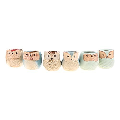 MEIBAOGE - 6 macetas de cerámica con diseño de búho, Base de Esmalte Que Fluye, Juego en Serie, Maceta de cerámica, Maceta de Escritorio, Maceta suculenta de diseño Bonito, Cuenco de Lavabo