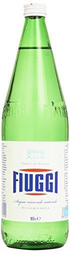 Fiuggi Mineral Water 1l