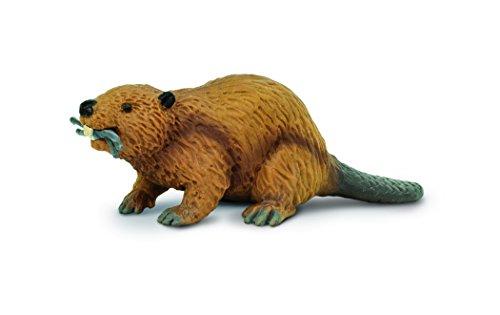 Safari S283629 Miniatur: Nordamerikanischer, wild lebender Biber aus der Reihe Wild
