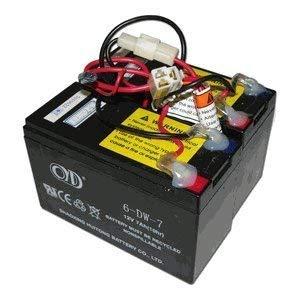 Razor E200 / E300 - Batería de repuesto para patinete eléctrico (24 V, 7 Ah), incluye arnés de cableado.