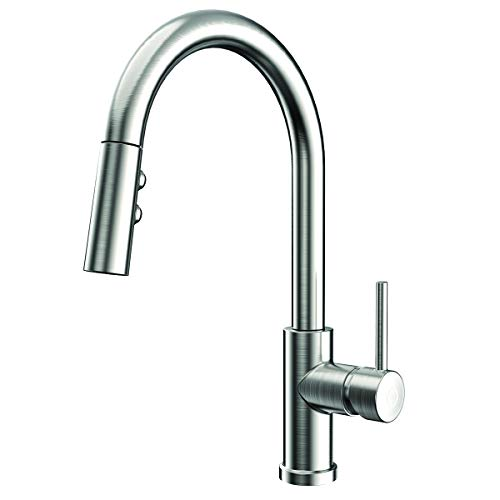 Speakman SB-1042-SS Neo Kitchen Faucet with Pull Down Sprayer, Stainless