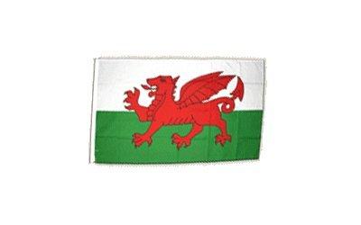 Fahne Flagge Wales 30 x45 cm