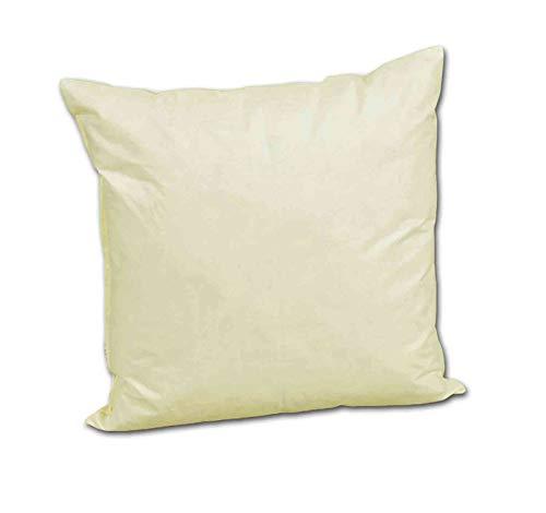 Betten-Anne Coussin de canapé 20 x 20 cm 70 g avec garnissage en plumes Crème