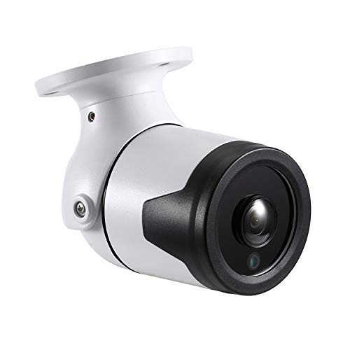 RevoTech® - I6046-P PoE Ojo de pez a Prueba de Agua 1920 x 1080P 2.0MP Bullet Cámara IP para Exteriores Cámara metálica de Seguridad ONVIF Night Vision P2P CCTV CAM con IR-Cut (Blanco)