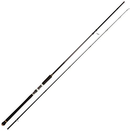 メジャークラフト 釣り竿 ショアジギングロッド スピニング 3代目 クロステージ CRX-1002LSJ 10.0フィート
