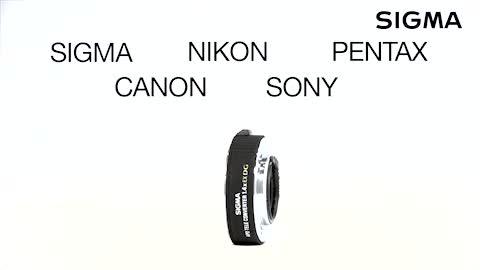 Sigma 1 4 Fach Ex Apo Dg C Af Tele Konverter Für Canon Kamera