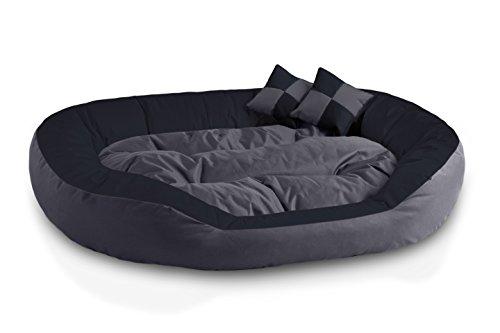 BedDog® 4in1 Hundebett SABA, Wende-Hunde-Kissen oval-rund, großes Hundekörbchen, abwischbares Hundebett mit Rand, für drinnen, draußen, XXL, Rock-Flow, anthrazit-grau