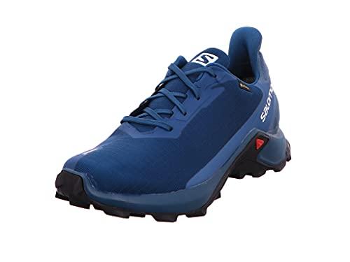 Salomon Alphacross 3 Gore-Tex (wasserdicht) Herren Trailrunning-Schuhe, Blau (Legion Blue/Mallard Blue/Night Sky), 42 ⅔ EU