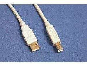 APC USB Cable 3m A/B - Cable USB (3,05 m)