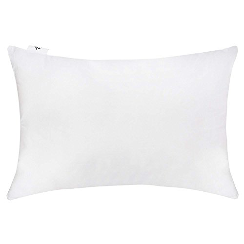 AmazingHind Microfiber Soft Pillows for