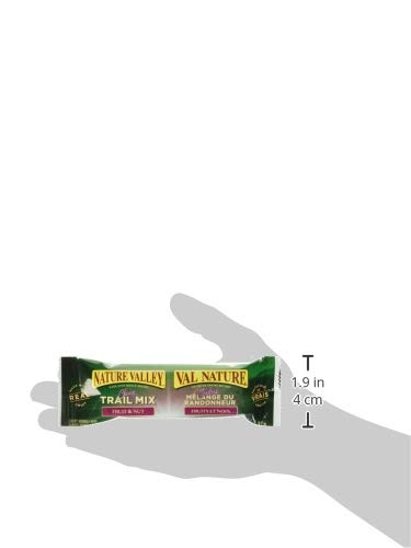 NATURE VALLEY Trail Mix Fruit and Nut, 12-Count Granola Bars, 420 Gram