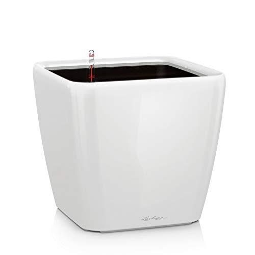 LECHUZA QUADRO Premium LS 50, Weiß Hochglanz, Hochwertiger Kunststoff, Inkl. Bewässerungssystem, Herausnehmbarer Pflanzeinsatz, Für Innen- und Außenbereich, 16280