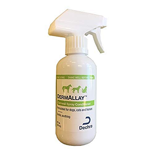 Dechra DermAllay Oatmeal Spray Conditioner for Dogs, Cats & Horses (8oz) - Gentle and Soothing, 8 Ounce (1810077)
