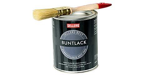 Premium Buntlack + Pinsel | 3 in 1 | attraktive Farbtöne | glänzend | gestalten und gleichzeitig schützen | 1 Liter, RAL 6009 Tannengrün
