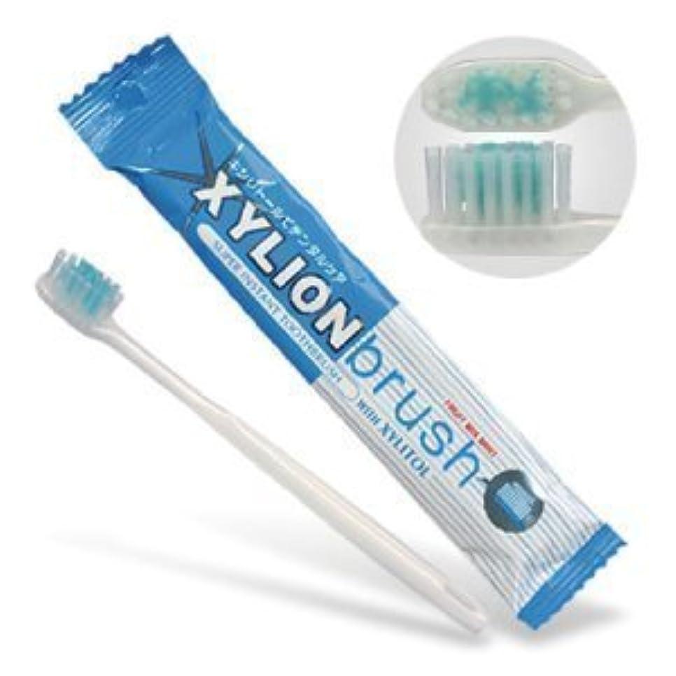 接続詞サスペンド別のキシリオンブラシ (XYLION brush) 10本