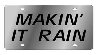 Makin' It Rain Stainless Steel License Plate