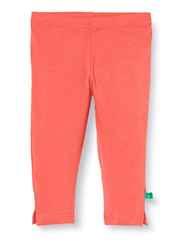 Fred'S World By Green Cotton Alfa 3/4 Leggings, Orange (Coral 016164001), 98 Bébé Fille