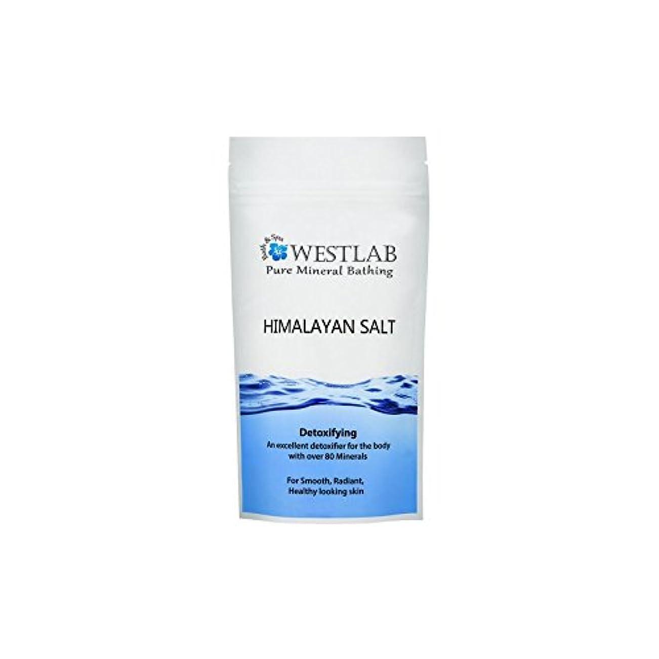 ショットアレンジマダムWestlab Himalayan Salt 500g (Pack of 6) - ヒマラヤの塩500グラム x6 [並行輸入品]