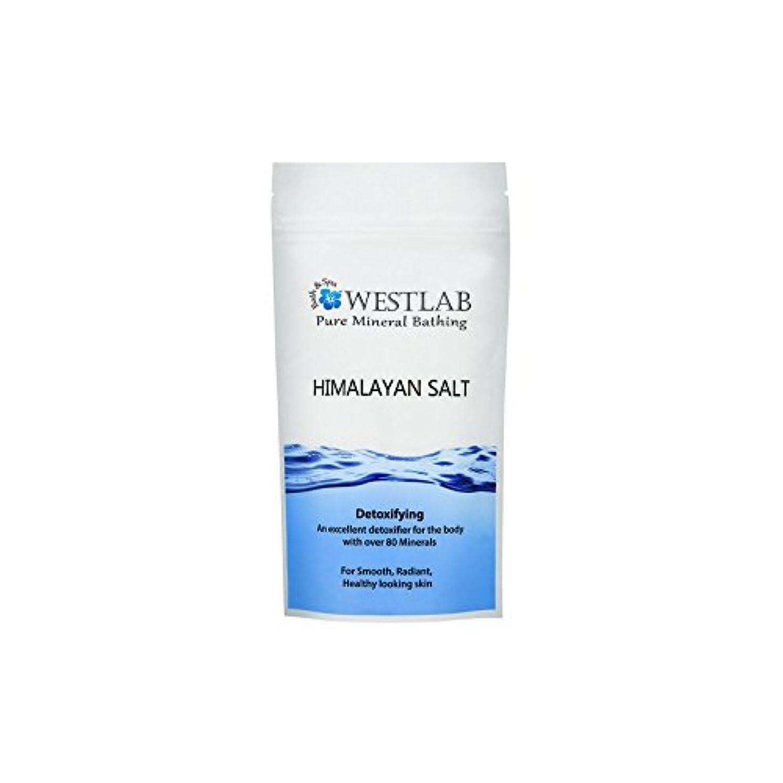 所有者刺繍布ヒマラヤの塩500グラム x4 - Westlab Himalayan Salt 500g (Pack of 4) [並行輸入品]