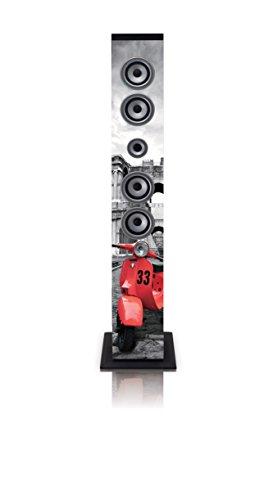 iCes IBT-6 Bluetooth-Standlautsprecher, 40 Watt Musikleistung (UKW-Radio, USB, SD-Kartenleser, AUX), Fernbedienung