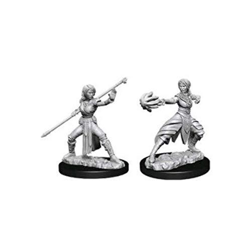 Nolzur's Marvelous Miniatures Wizkids - D&D Female Half-Elf Monk - WZK73839