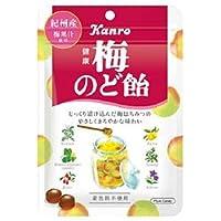 カンロ 健康梅のど飴 90g×6袋入×(2ケース)