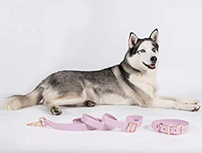 Heavy Duty Dog Leash & Collar Set 6FT-Nylon Dog Leash, Water Resistant, Comfortable Handle, Easy to Use Collar Hook, Sturdy Comfortable Leash Supports The Strongest Pulling L-M Dogs, Pink