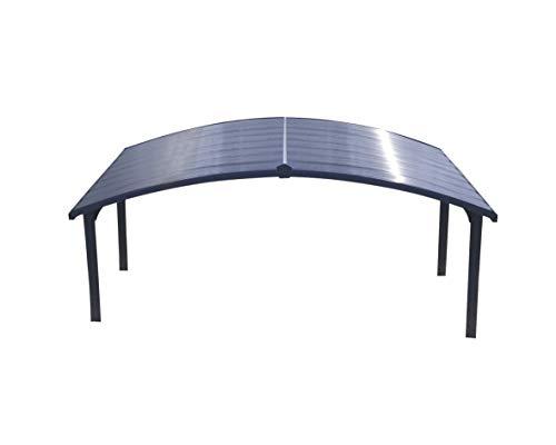 Mejor Palram Arizona Breeze HG9102 Double Carport, 19 x 16 x 9, Gray/Bronze crítica 2020