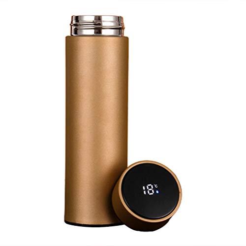 Bireegoo - Botella térmica de 500 ml con pantalla LED de temperatura de agua inteligente, acero inoxidable para bebidas al vacío, botella de bebida deportiva para gimnasio, oficina en casa