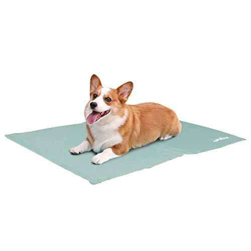 WISFORBEST Alfombrilla de Refrigeración para Mascotas Cama Veranopara Perros y Gatos Alfombra de Enfriamiento para Animales para Verano Color Verde Menta (50x65cm)