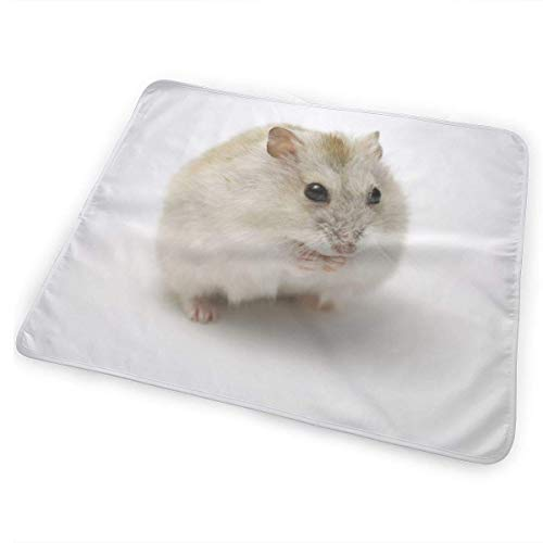 Voxpkrs Cute Little Hamster Baby Crib Pee Changing Pad Mat Mattress Protector for Toddler Kids Infant Pets