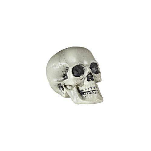 Widmann 01379 - Totenkopf aus Kunststoff, Größe circa 21 cm