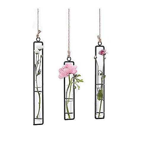 Ivolador 3 Packung Verschiedene Länge Reagenzglas Hängende Glaspflanzer Bud Blume Vase Terrarium Container für Dekoration Grüne Pflanzen Hochzeit BJY969