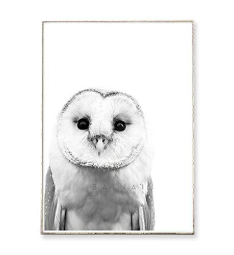 DIN A4 Kunstdruck Poster SCHLEIEREULE °2 -ungerahmt- Vogel, Eule, Natur, Tier, skandinavisch, nordisch