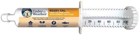 Under the Weather Pets | Ready Cal for Cats & Dogs | High Calorie Nutritional Supplement for Weight Gain & Not Eating | 9 Vitamins, 7 Minerals, Fatty Acids