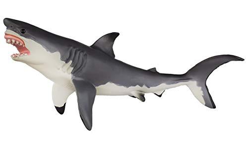 Safari 2112-02 - Tiburón Blanco Monterrey