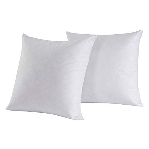 Set of 2, 95% Feather 5% Down Square Decorative Throw Pillow Insert, 100% Cotton, 22x22 Inch