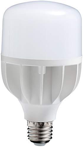 DAYLIGHT COMPANY LLC Leuchtmittel mit Tageslicht-LED.