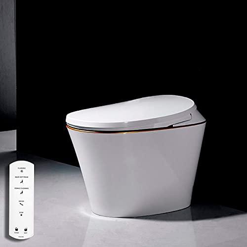 Inodoro Bidet completo, VOGO R570 Asiento Sanitario japonés Inteligente, WC para baño con Ducha eléctrica (Salida a pared)