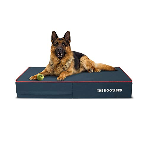 The Dog's Bed Orthopedic Dog Bed Large Blue/Red 40x25, Memory Foam, Pain Relief: Arthritis, Hip & Elbow Dysplasia, Post Surgery, Lameness, Supportive, Calming, Waterproof Washable Cover