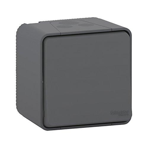 interrupteur bipolaire - gris - saillie - mureva styl - schneider electric mur35033